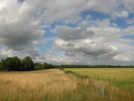 White Cumulus Cloud Over Brown And Green Grass Field