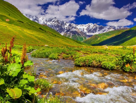 River Flowing At The Valley Under Blue And White Cloudy Sky