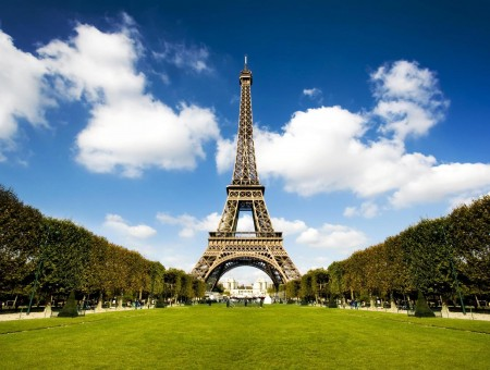 Eiffel Tower Surrounded With Green Trees And Buildings With Blue Sky Background
