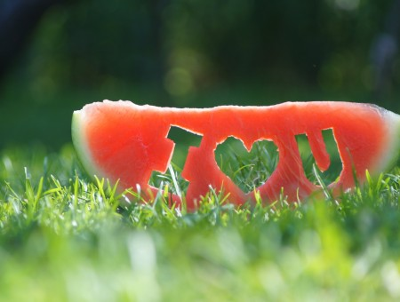 Water Melon Carved With I Love You On The Ground During Day Time