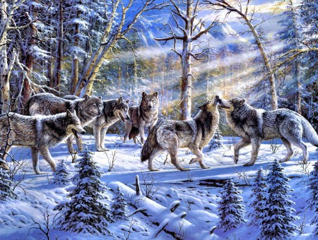Wolves On Snow Covered Field During Daytime