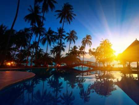 Sunlight Over Outdoor Swimming Pool With Surrounding Palm Trees