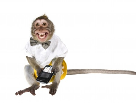 Smiling Monkey Wearing White Shirt Holding Cell Phone