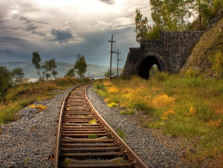 Brown Railroad Under Cloudy Sky With Trees In Sight
