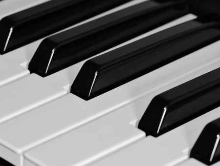 Piano Keys In Close Up Photography