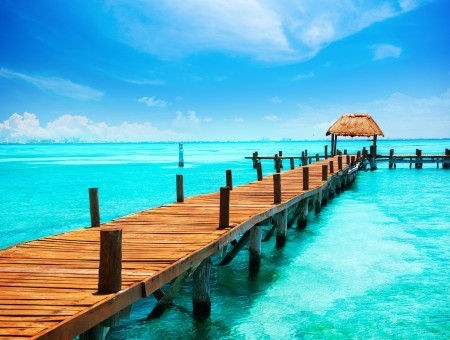 Brown Wooden Dock On The Blue Clear Water During Daytime