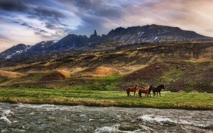 Desktop Wallpaper: Horses Near Mountain...