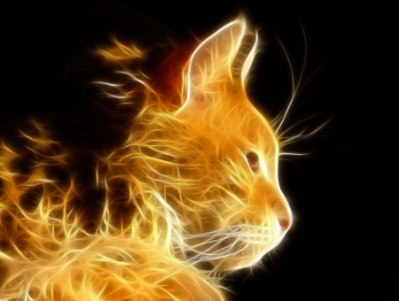 Yellow Flame Cat Illustration