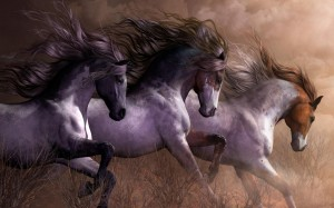 Desktop Wallpaper: 3 Stallions On Grass...