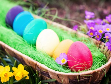Purple White Teal White Yellow And Red Coloured Eggs In A Wooven Basket
