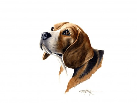 Brown And White Beagle Art Work
