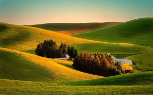 Desktop Wallpaper: Green rolling hills