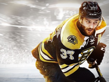 Hockey player wallpaper