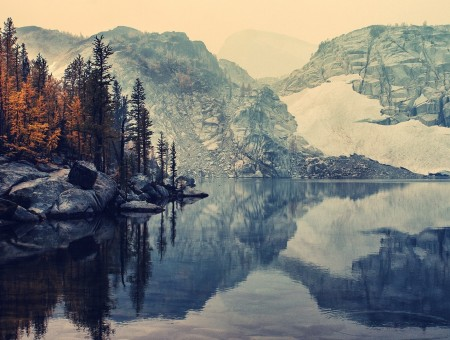 Gray white and brown lake mountains and tree paint