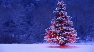 Desktop Wallpaper: Lighted christmas tr...