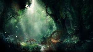 Desktop Wallpaper: Fantasy forest
