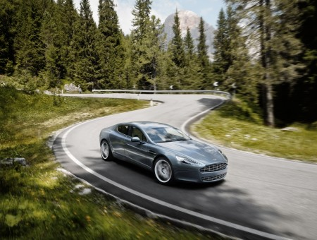 Silver Aston Martin on forest road