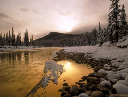 Gold river and snow