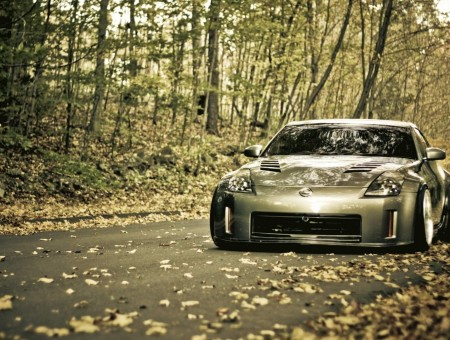 gray nissan in autumn forest