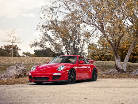red porsche in autumn