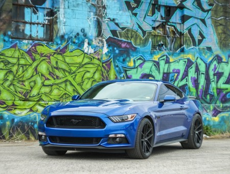blue ford shelby and graffiti