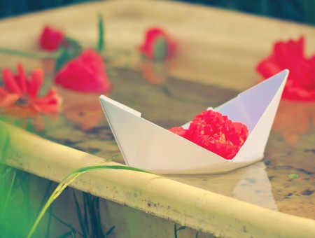 Pepper boat and flowers