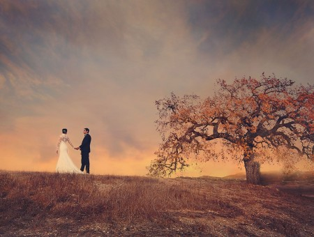 Couple and lonely tree