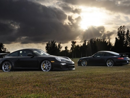 Two black Porshe on grass