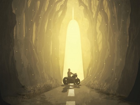 Motorcyclist in fantastic art
