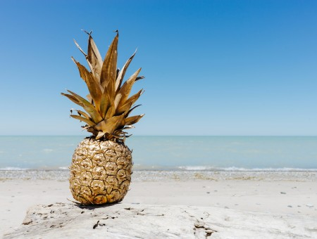 Pineapple also has a vacation
